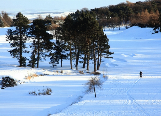 A cross country skier on Mortonhall golf course, Edinburgh
