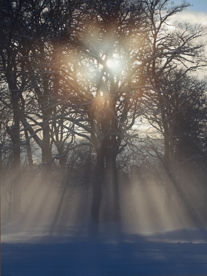 suns rays through winter mist, Edinburgh
