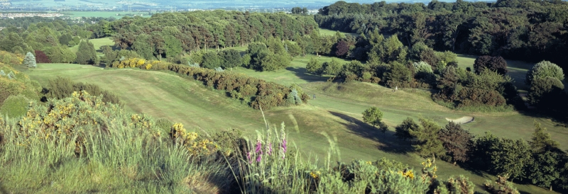 Mortonhall Golf course, Edinburgh, in midsummer