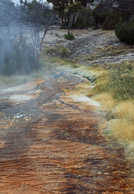 USA: River at Mammoth Hot springs, Yellowstone