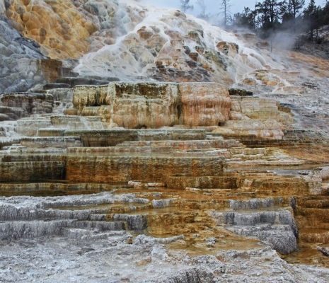 USA: Yellowstone, Palette Spring