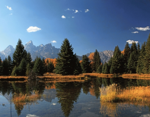USA: The Tetons from Schwabacher's Landing.