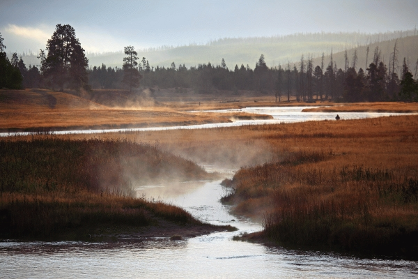 USA: Early mist on Madison river, Yellowstone, Wyoming