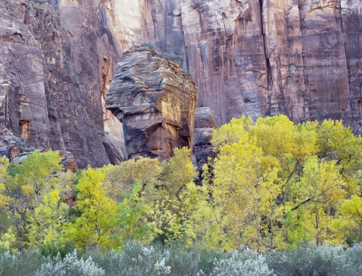 The Pulpit Rock and the temple of Sinawava in Zion National Park, Utah, USA