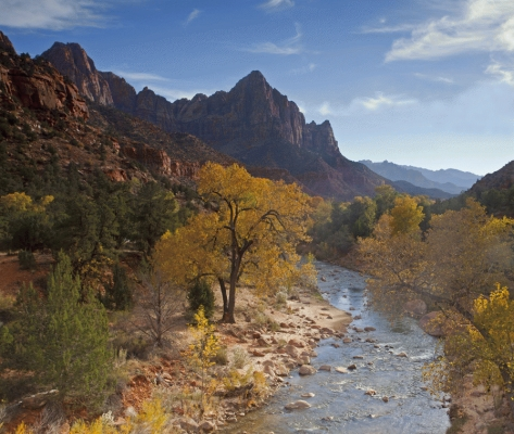 Iconic view of the Virgin river and the Watchman