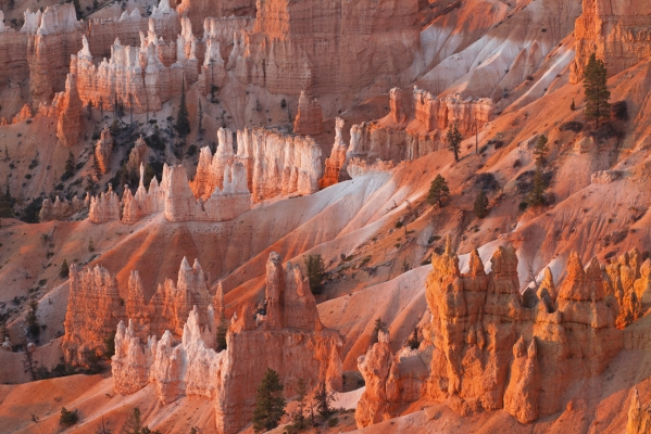 Bryce Canyon, Utah, USA, from Sunrise Point
